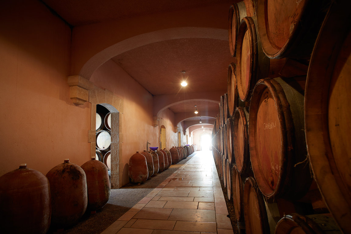 Wine-ageing at Frédéric Magnien, between old oak barrels and terra-cotta jars.