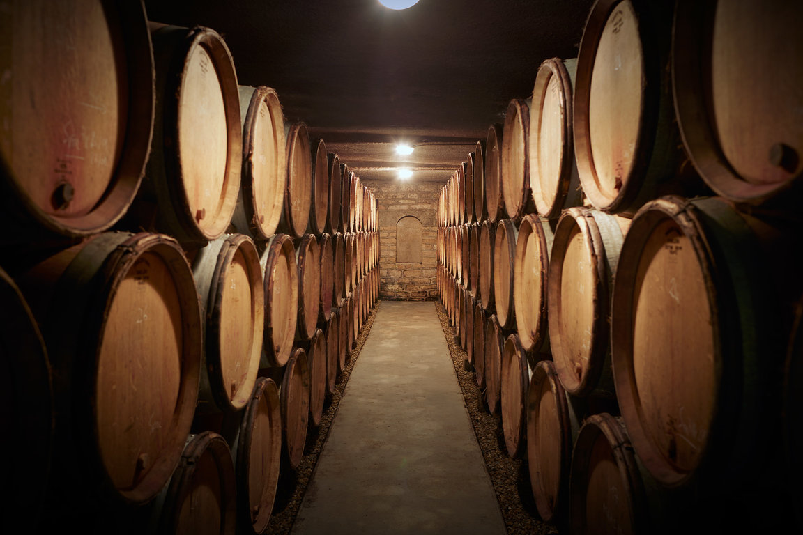 Domaine Michel Magnien's cellar